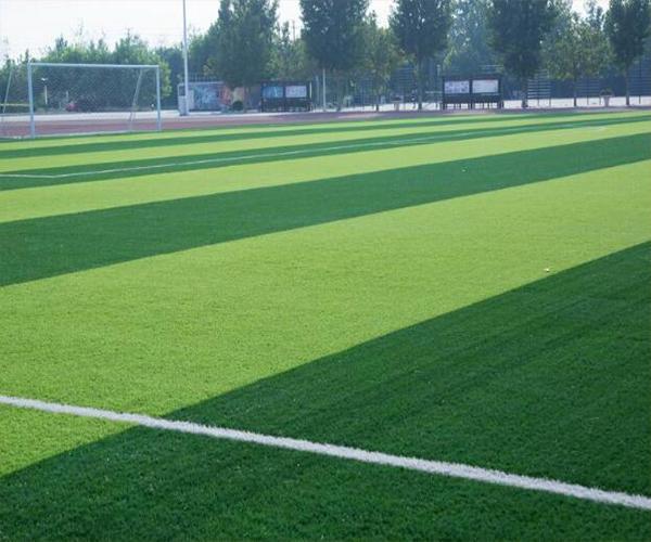 学校人造草坪足球场