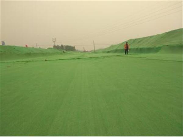 六针防尘网使用案例