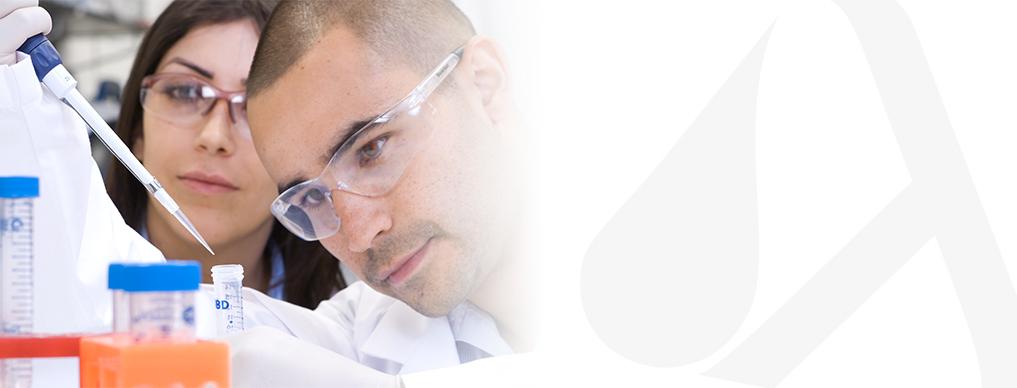 bnr-workshops-blank.jpg