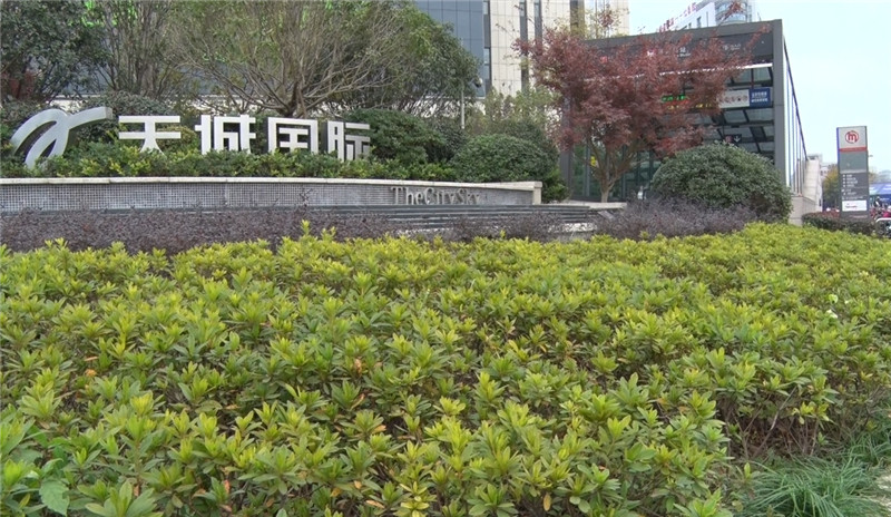 杭州地铁绿化2.jpg