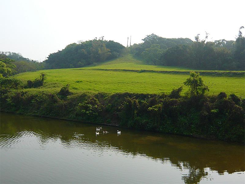 广州先锋园艺