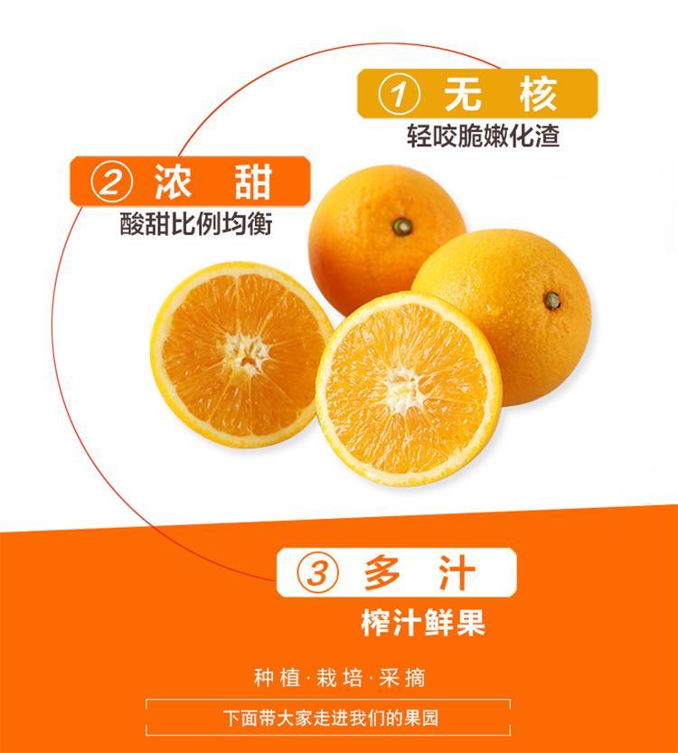 正宗赣南脐橙 甜橙 新鲜水果橙子【产地直销】每箱10斤左右