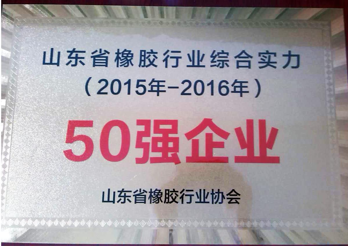山東省橡膠行業50強
