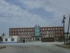 大榆树中学