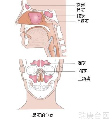 臺灣長庚醫院 | 鼻竇癌險失明 質子放療克癌保視力